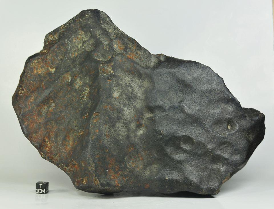 dar-el-kahal-h5-6-5-1kg-complete-specimen